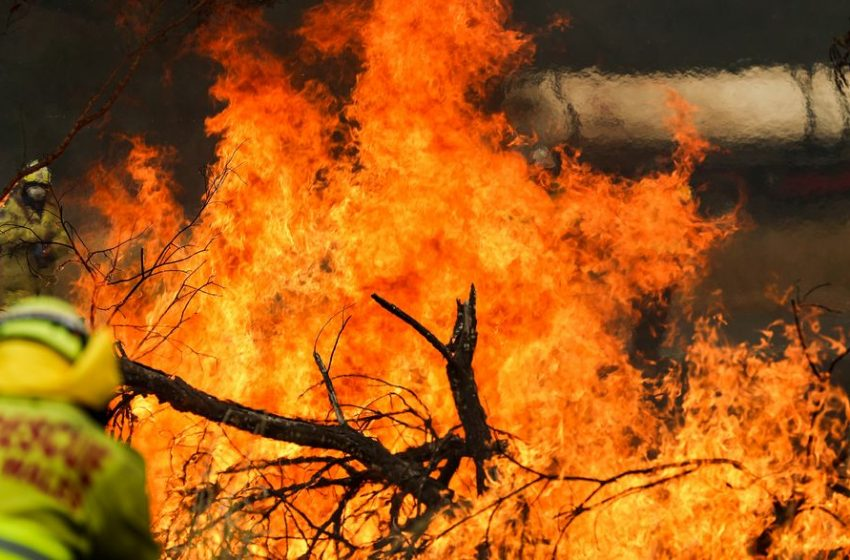 183 Arrested For Australian Bushfire 'Arson'