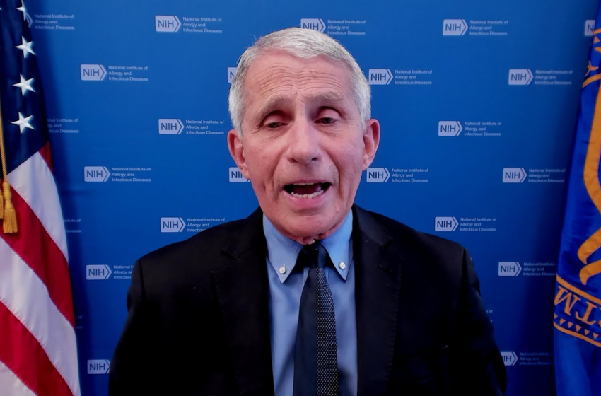 India Must Be Part Of Global Covid Clinical Trials, Says Fauci